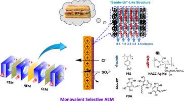 "Sandwich""-like structure modified anion exchange membrane"