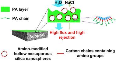 Amino-modified hollow mesoporous silica nanospheres-incorporated