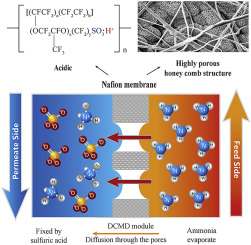 Enhanced ammonia recovery from wastewater by Nafion membrane with