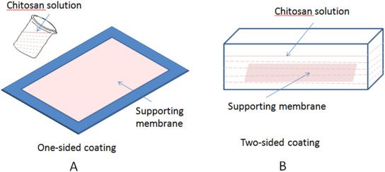Fabrication of proton permselective composite membrane for