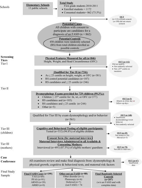 The continuum of fetal alcohol spectrum disorders in a community in