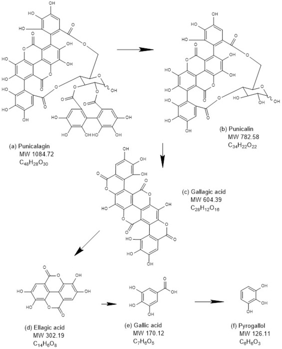 Identification Of Potentially Cytotoxic Phenolics Present In