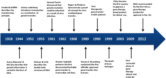 History of gene therapy sciencedirect download high res image 209kb ccuart Gallery