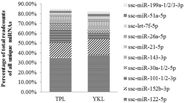 Comparison of liver microRNA transcriptomes of Tibetan and Yorkshire