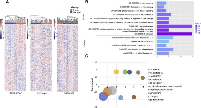 Integrated Analysis Of Gene Expression Signatures Associated With Colon Cancer From Three Datasets Sciencedirect