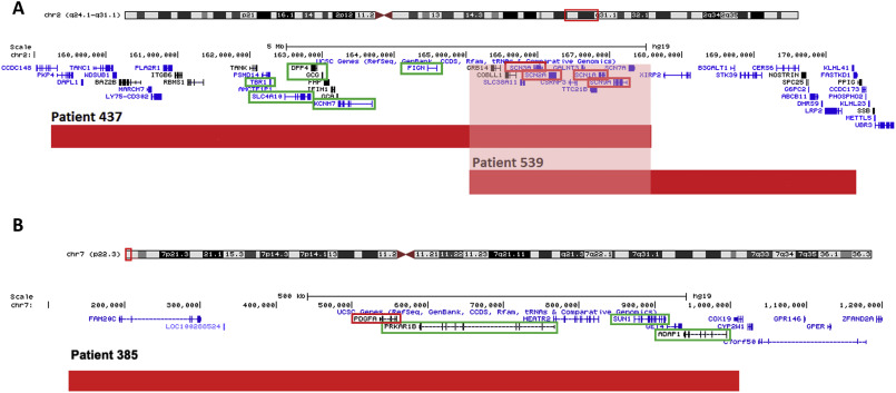 Chromosomal microarray analysis of Bulgarian patients with epilepsy