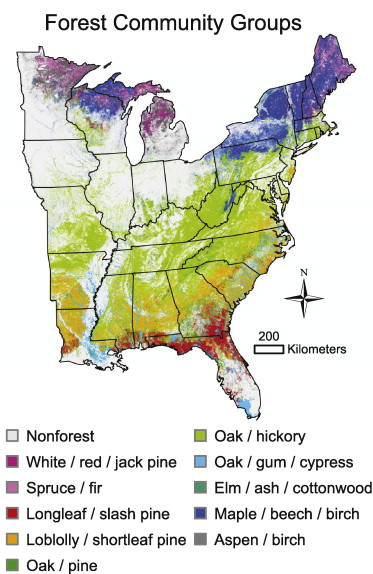 Fragmentation Of Forest Communities In The Eastern United States