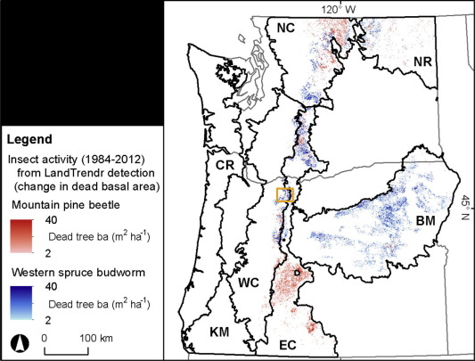 Spatiotemporal dynamics of recent mountain pine beetle and