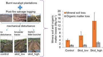 Short-term effects of post-fire salvage logging on runoff