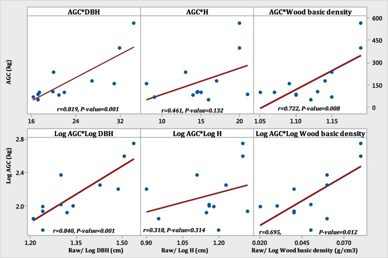 Species-specific allometric models for estimation of the