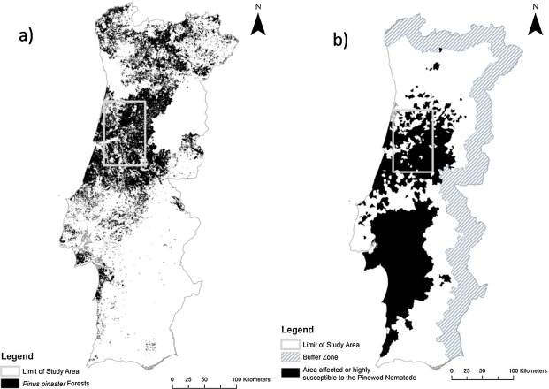 Climate and landscape patterns of pine forest decline after invasion