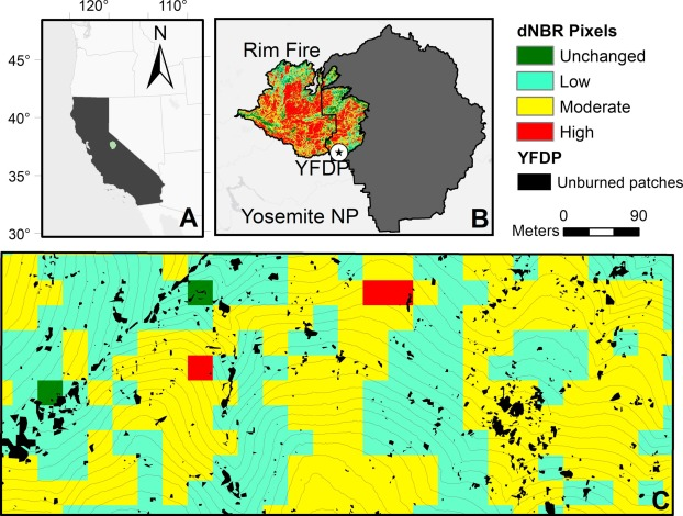 The importance of small fire refugia in the central Sierra