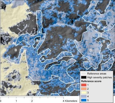 Forest structure and pattern vary by climate and landform