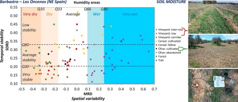 stability and patterns of topsoil water content in rainfed vineyards