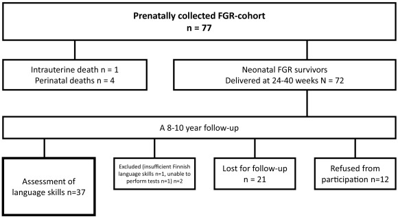Fetal hemodynamics and language skills in primary school