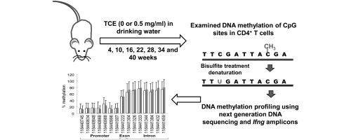 Extrahepatic Manifestations of Acute Hepatitis B Virus Infection