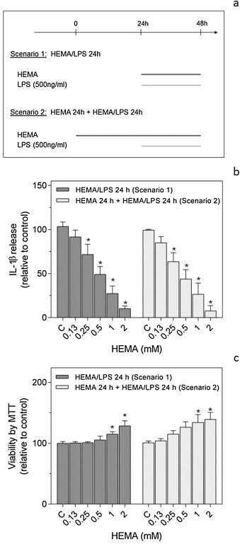 The dental monomer hydroxyethyl methacrylate (HEMA