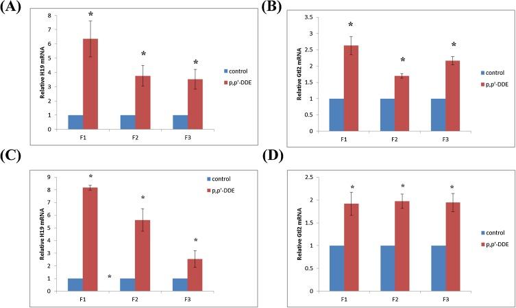Transgenerational impaired spermatogenesis with sperm H19