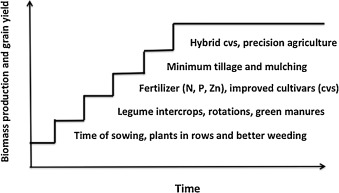 Issues for cropping and agricultural science in the next 20