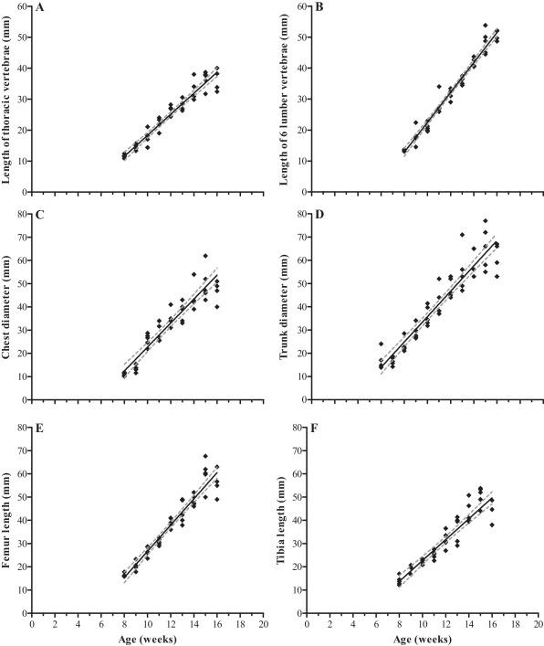 Femur Length Chart by Week