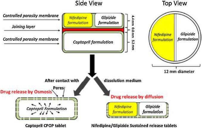 Drug system controlled pdf delivery
