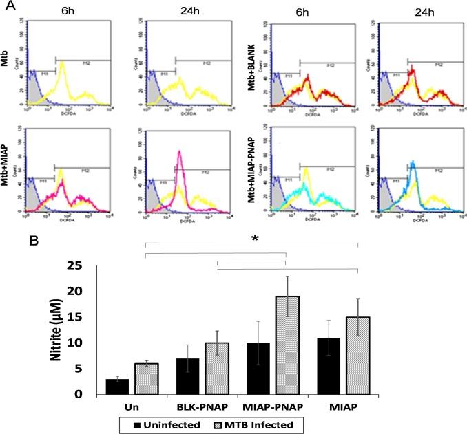 Reclaiming hijacked phagosomes: Hybrid nano-in-micro