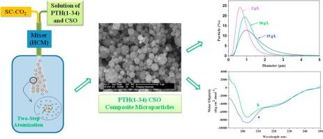 Preparation of micrometric powders of parathyroid hormone