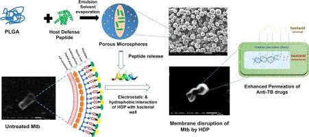 Mycobactericidal activity of some micro-encapsulated
