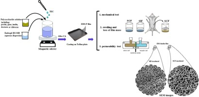 Screening of different polysaccharides in a composite film based on