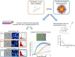 Pyridoclax Loaded Nanoemulsion For Enhanced Anticancer Effect On Ovarian Cancer Sciencedirect