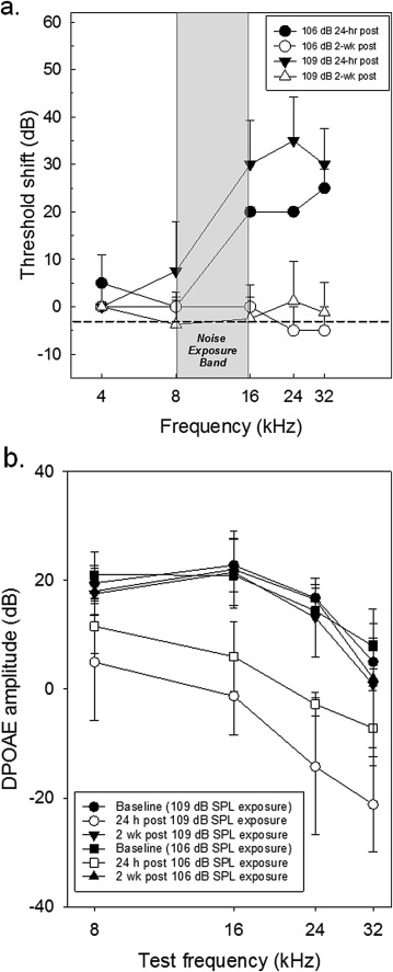 """Evidence of """"hidden hearing loss"""" following noise exposures"""