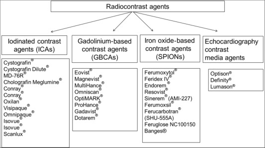 Radiological Contrast Agents and Radiopharmaceuticals - ScienceDirect