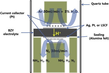 Electrochemical ammonia synthesis from steam and nitrogen using schematic diagram of ammonia synthesis ccuart Images