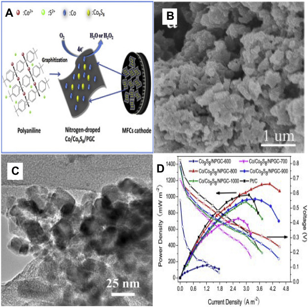 Progress of air-breathing cathode in microbial fuel cells