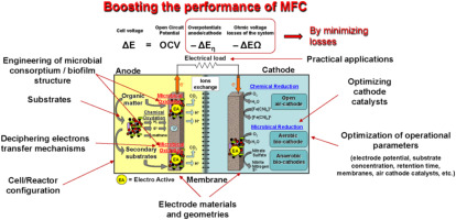 Microbial fuel cells: From fundamentals to applications  A review