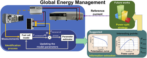Overview and benchmark analysis of fuel cell parameters estimation