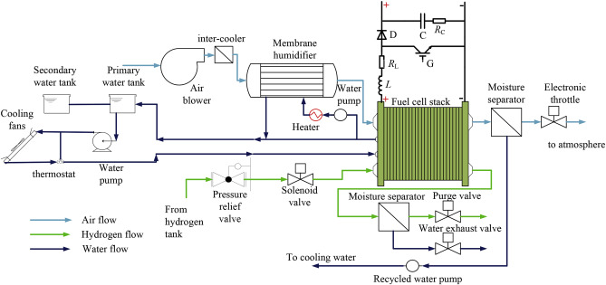 Interactions between a polymer electrolyte membrane fuel