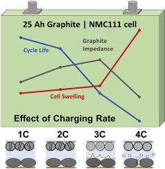 Fast-charging effects on ageing for energy-optimized