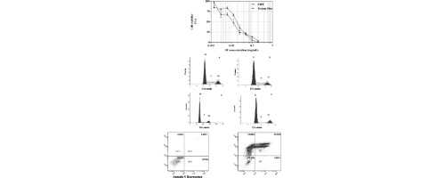 Investigation of Ehrlich ascites tumor cell death mechanisms induced