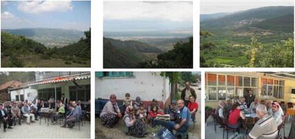 An Ethnobotanical Study Of Medicinal Plants In Turgutlu Manisa Turkey Sciencedirect