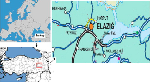 Traditional uses of medicinal plants in Elaz Turkey ScienceDirect