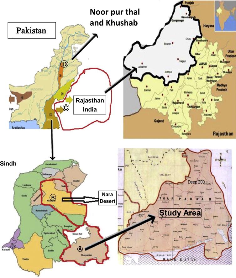 thar desert pakistan map Ethnobotany Of Medicinal Plants In The Thar Desert Sindh Of Pakistan Sciencedirect thar desert pakistan map