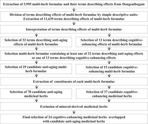 Studies on medicinal herbs for cognitive enhancement based