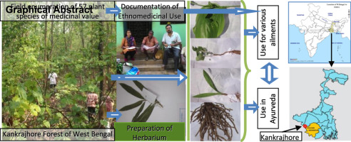 Inventorization of some ayurvedic plants and their
