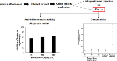 evaluation of acute toxicity genotoxicity and inhibitory effect on