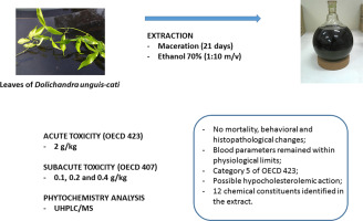 Evaluation of acute and subacute toxicity of hydroethanolic extract