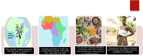 The use of medicinal plants by pregnant women in Africa: A