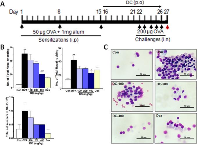 vaccin toxoplasmoza hpv viren medikamente