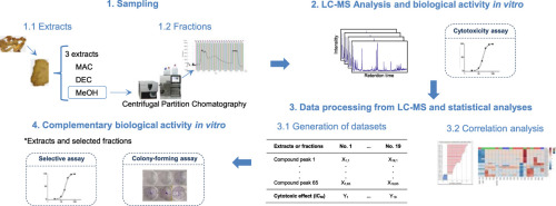 Metabolic profiling and correlation analysis for the determination