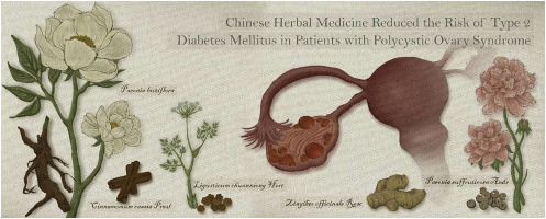 Integrative Chinese herbal medicine therapy reduced the risk